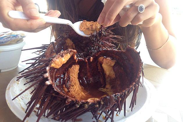 Eating Adventure - Sea Urchin aka uni