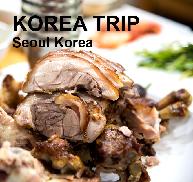 Korea Travel EP1 Going Home, Seoul Korea
