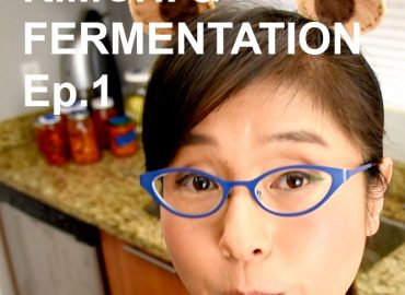 Probiotic foods EP1 – Kimchi Making and Fermentation