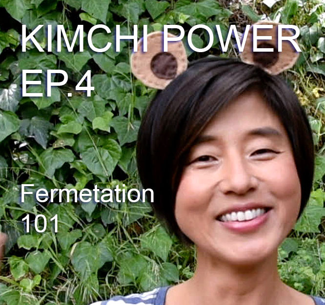 Fermentation 101 from 4 of the Worlds Leading Fermentation Experts