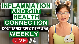 inflammation and gut health connection